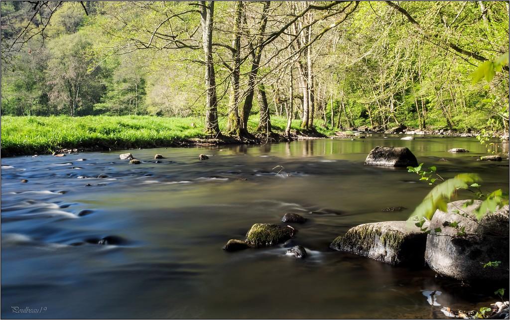 Calme au bord de la rivière ... Pb_1218-45571a7